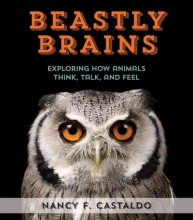 Beastly brains : , exploring how animals talk, think, and feel / cover image
