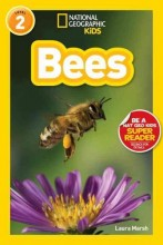 Bees /  cover image