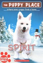 Spirit  cover image