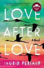 Love after love :       a novel /       cover image